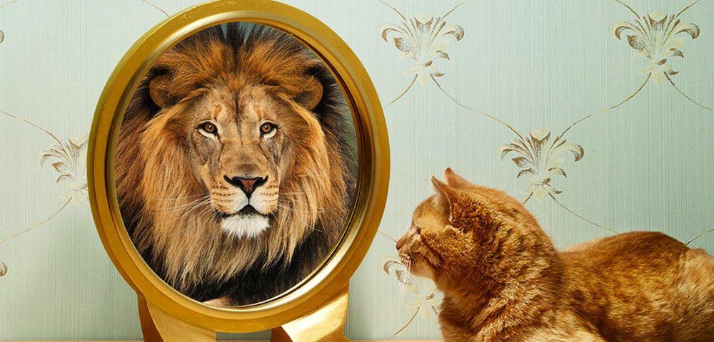 psihologia autoînșelării